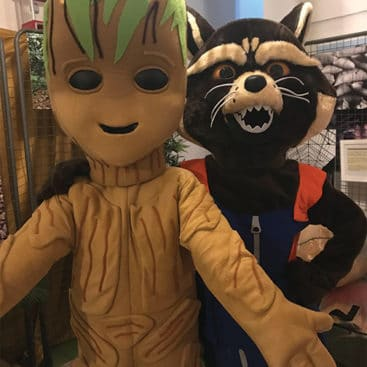 Location mascotte Groot et Rocket
