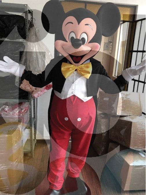 Location mascotte de Mickey